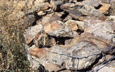 Significant Savings On Montana Moss Stone