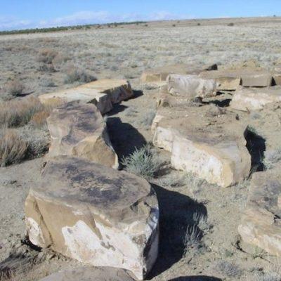 Desert Bronze Sandstone Boulders