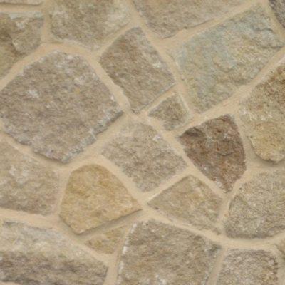 Limestone Desert Shell