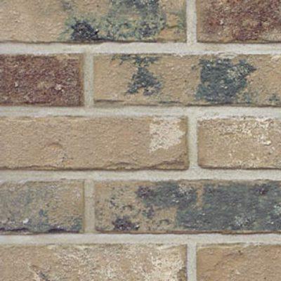 Cascade - Hebron Brick