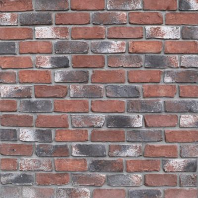 Colorado Used Thin Brick